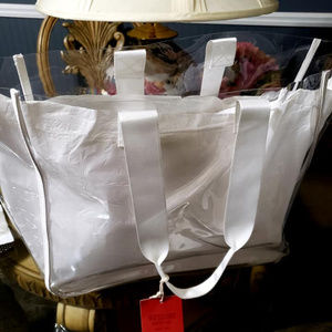 CLEARB BAG WITH REMOVABLE INSERT